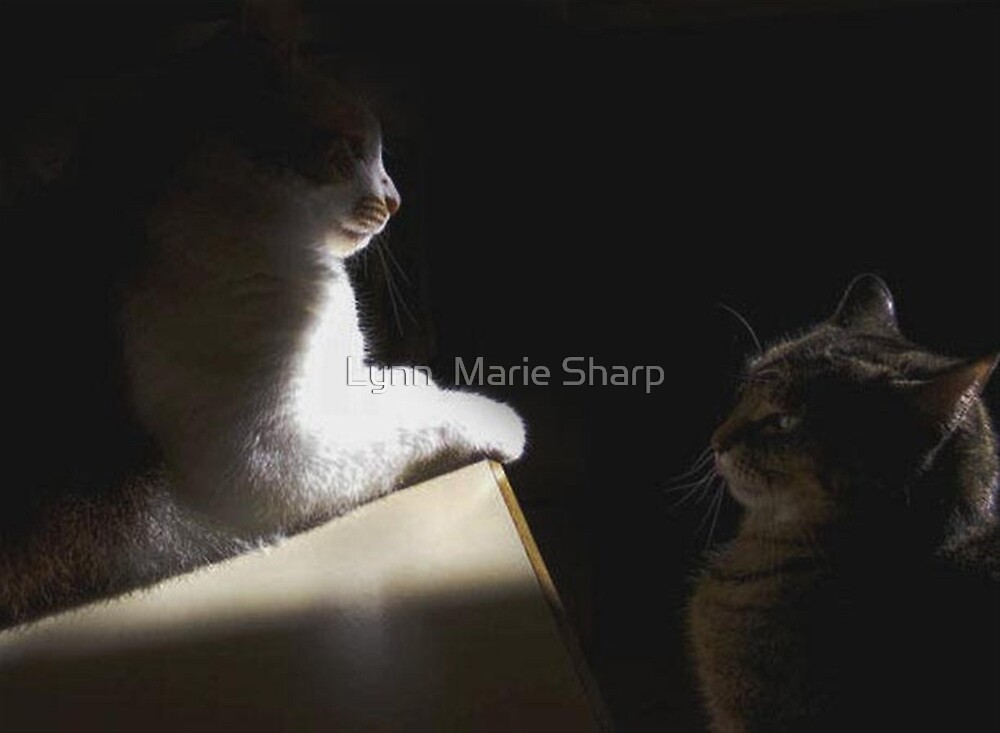 This Is My Place by Marie Sharp