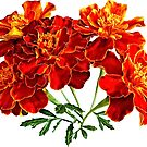 Bouquet of Marigolds by Susan Savad