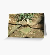 prarrie dog guarding home Greeting Card