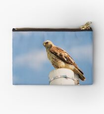 Red Tailed Hawk Studio Pouch