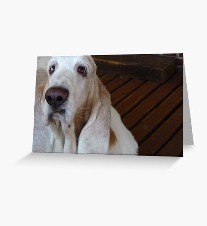 Barney. Do I really have to smile? Greeting Card