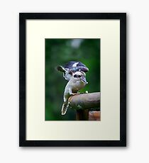 Burra Eating... Framed Print