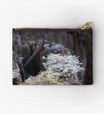 Lichen Stump: Washpool National Park, NSW Studio Pouch