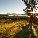 Warramate Hills - Yarra Valley by Timo Balk