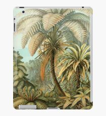 Ferns - Ernst Haeckel iPad Case/Skin
