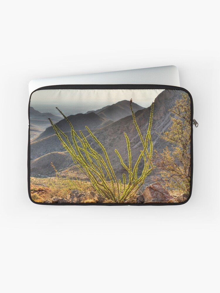 An Ocotillo in the Franklin Mountains | Laptop Sleeve
