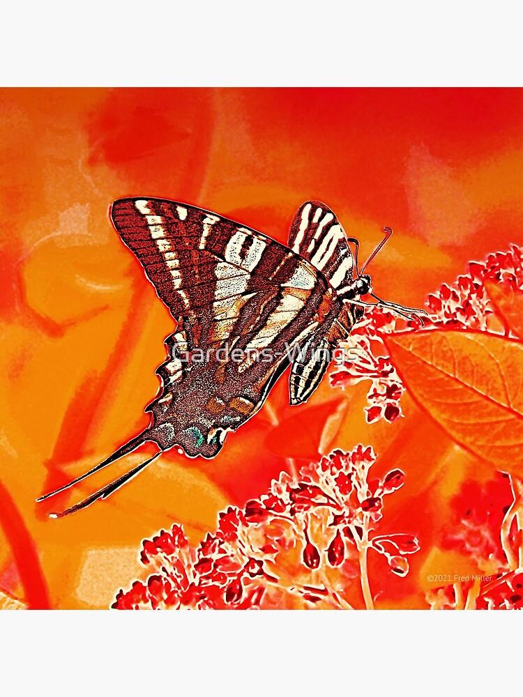 Orange Digital Zebra Swallowtail by Gardens-Wings