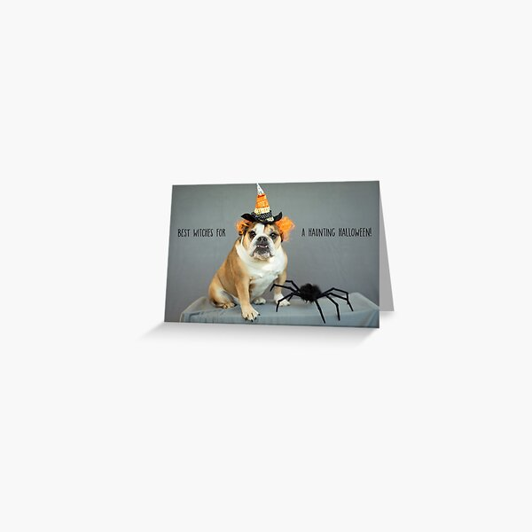 """""""Best Witches for A Haunting Halloween"""" Greeting Card Greeting Card"""