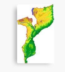 Mozambique Topographical Map Canvas Print