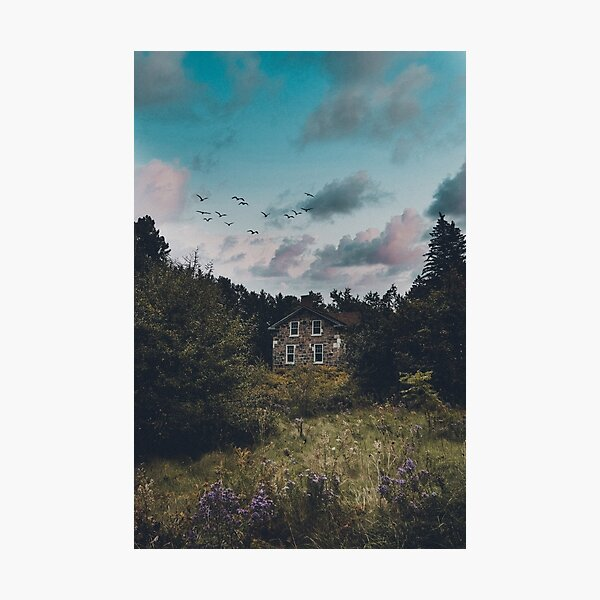 Cottage in the Forest Photographic Print