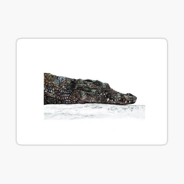 Crocodile Rough and Ready Sticker