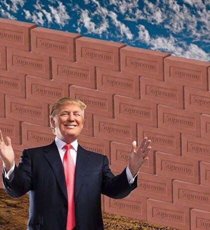 Donald Trump, Supreme Brick, Mexico Wall Sticker
