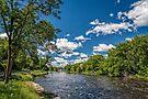 Napanee River by PhotosByHealy