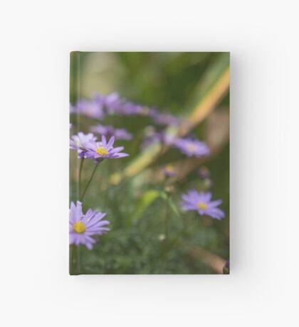 Swan River Daisies Hardcover Journal