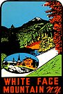 Whiteface Mountain Vintage Travel Decal by hilda74