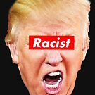 Trump Racist by Thelittlelord
