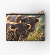 Highland Cattle at dusk Studio Pouch
