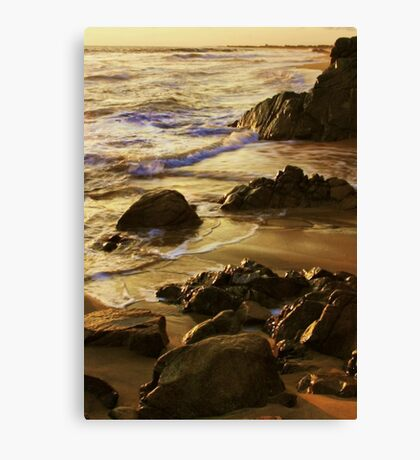 On Golden Sands Canvas Print