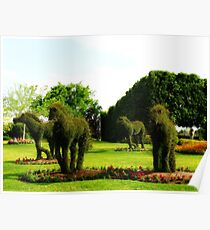 Topiary Horses Poster