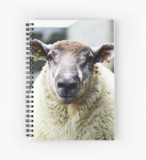 Nobby Spiral Notebook