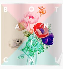 Pretty Botanicals Poster