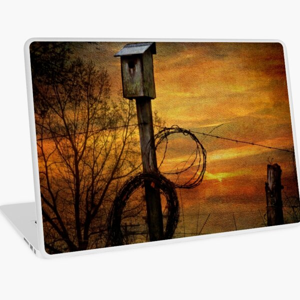 Blue Bird House and Barbed Wire Laptop Skin