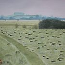 Ant Hills by Charlotte Rose