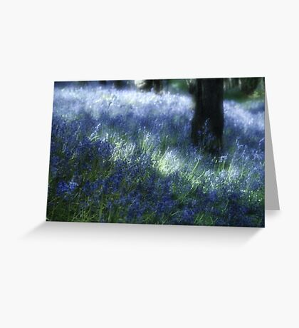 Softly Through The Bluebells Greeting Card