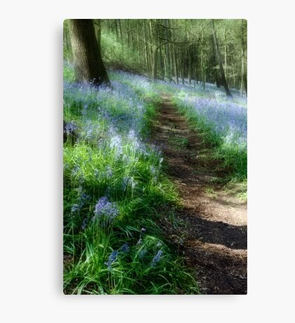 Bluebell Rise Canvas Print