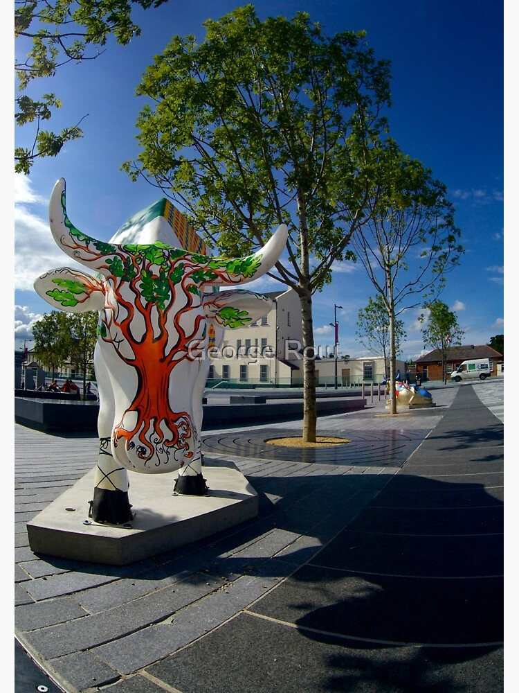Cows and Trees, Ebrington Square, Derry by VeryIreland