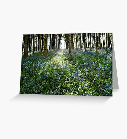Bluebell Glimmer Greeting Card