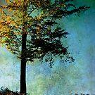 One Tree by Ann Garrett
