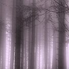 Purple Mist by Ann Garrett