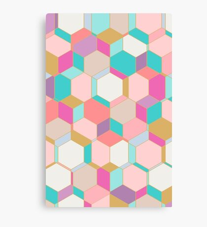 HEX2 Canvas Print