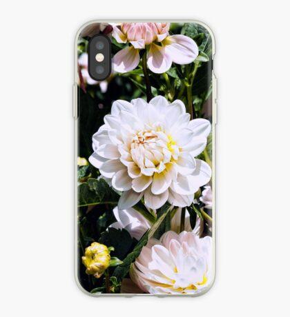 Dahlia Love  iPhone Case