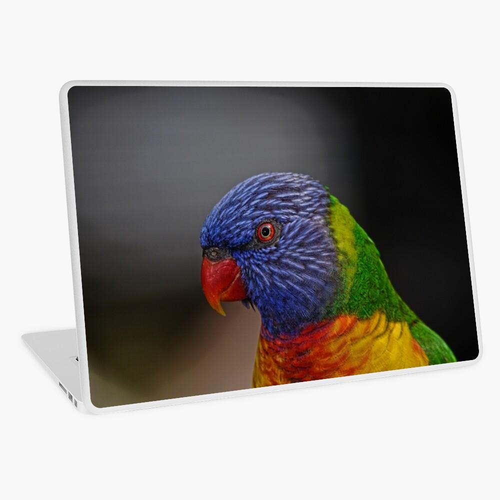 Rainbow Lorikeet portrait Laptop Skin