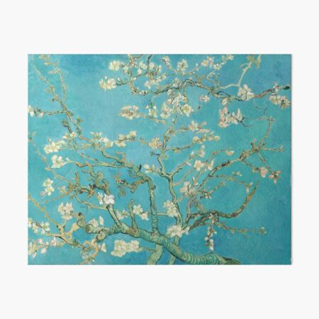 Almond Blossoms by Vincent Van Gogh  Art Board Print