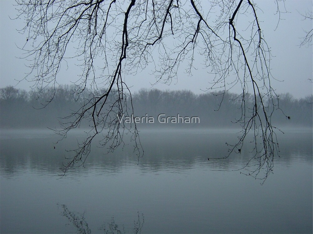 Foggy River by Valeria Lee