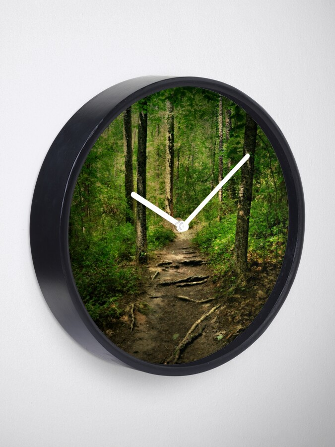 Alternate view of The Hidden Trails of the Old Forests Clock