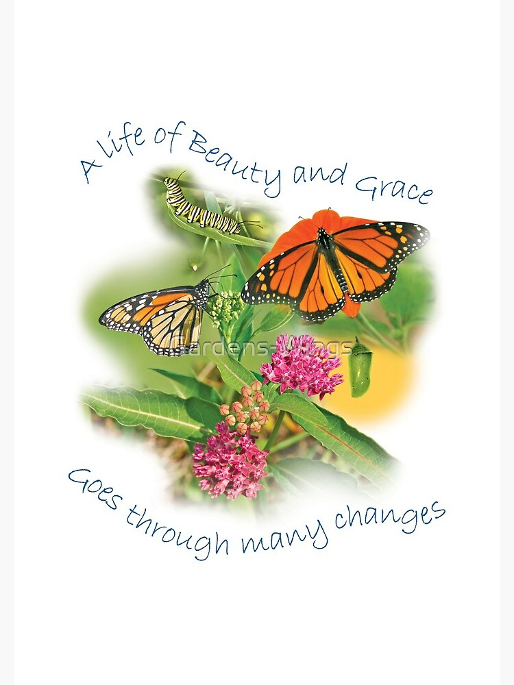 A Life of Beauty and Grace goes through many changes by Gardens-Wings