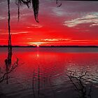 Red Florida Sunrise by jozi1