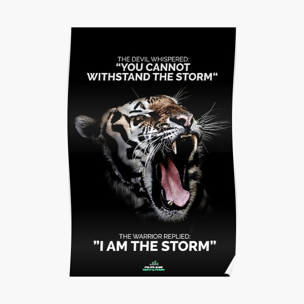 I AM THE STORM! Poster