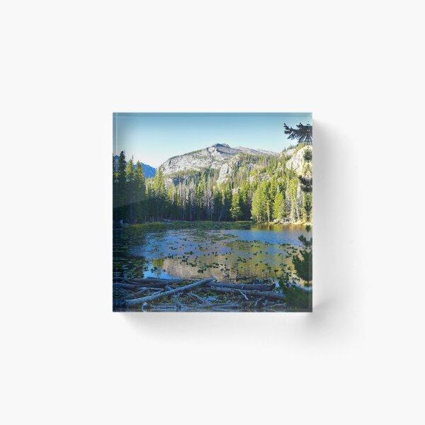 Morning at Nymph Lake - Colorado Acrylic Block