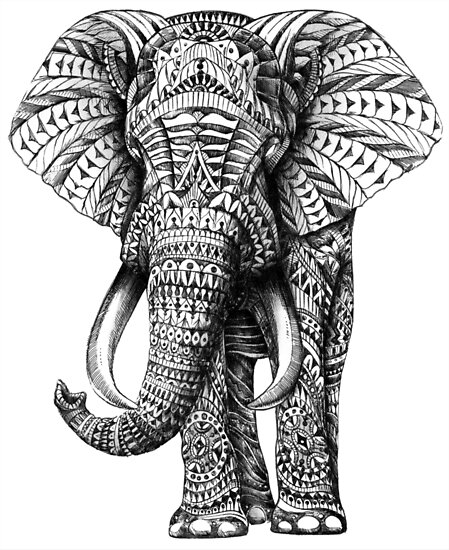 Ornate elephant by bioworkz
