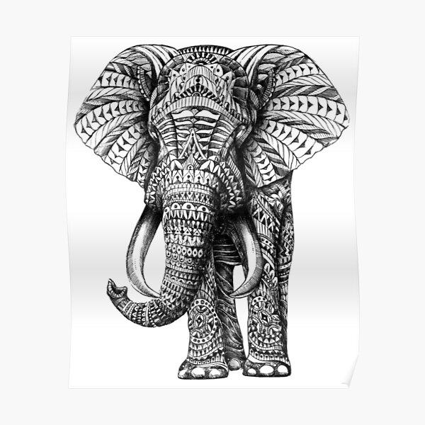 Ornate Elephant Poster