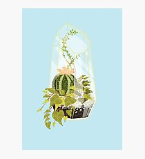 Blue Terrarium Photographic Print