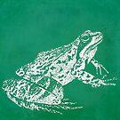 green frog illustratiom 1 by Bronia Sawyer