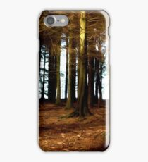 Woods,early light. iPhone Case/Skin