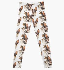 Rat Terrier Leggings