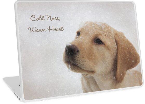 Cold Nose Warm Heart by Lori Deiter